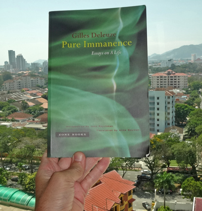 Pure Immanence: Essays on a Life