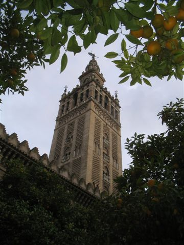 another shot through the orange grove at the Giralda